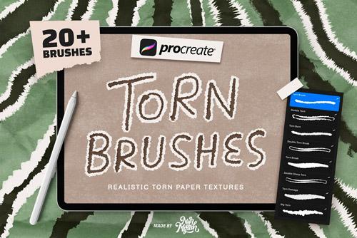 Torn Brushes.jpg